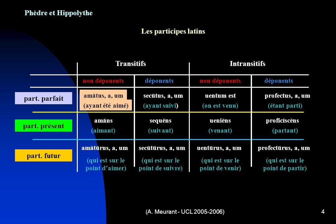 Phèdre et Hippolythe Les participes latins Transitifs Intransitifs