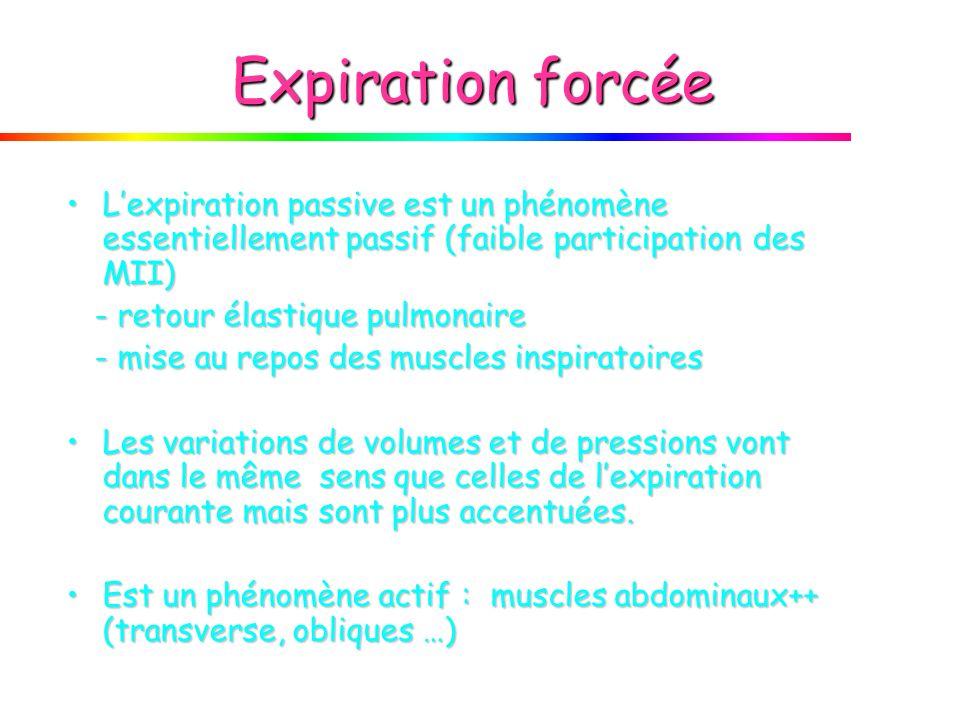 Expiration forcée L'expiration passive est un phénomène essentiellement passif (faible participation des MII)