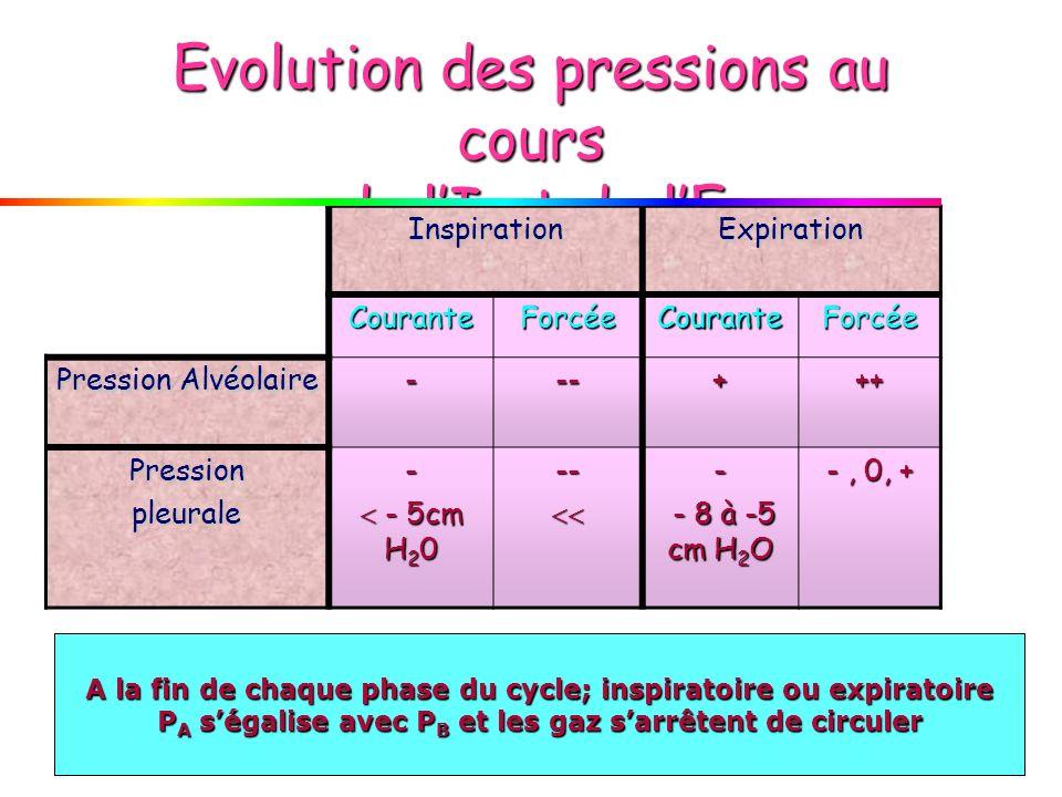 Evolution des pressions au cours de l'I et de l'E