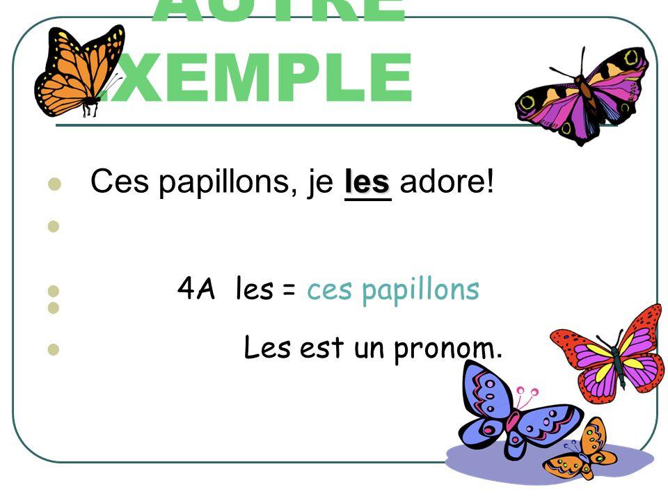AUTRE EXEMPLE Ces papillons, je les adore! 4A les = ces papillons