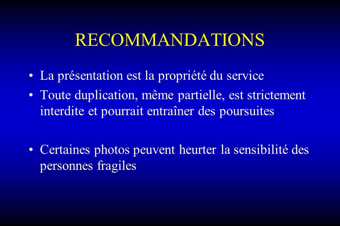 RECOMMANDATIONS La présentation est la propriété du service