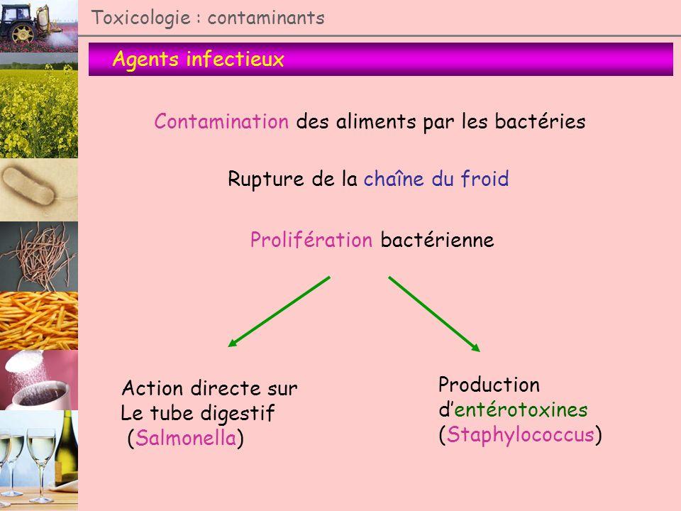 Contamination des aliments par les bactéries