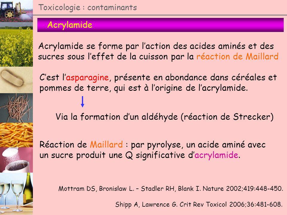 Acrylamide se forme par l'action des acides aminés et des