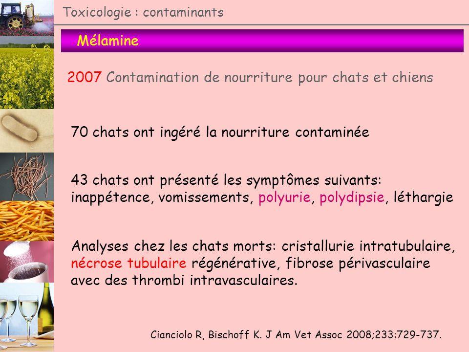 2007 Contamination de nourriture pour chats et chiens