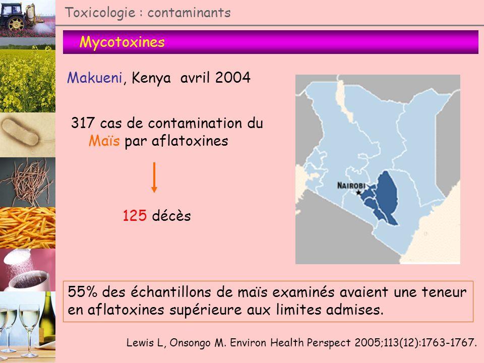 317 cas de contamination du Maïs par aflatoxines