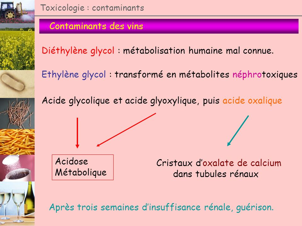 Diéthylène glycol : métabolisation humaine mal connue.
