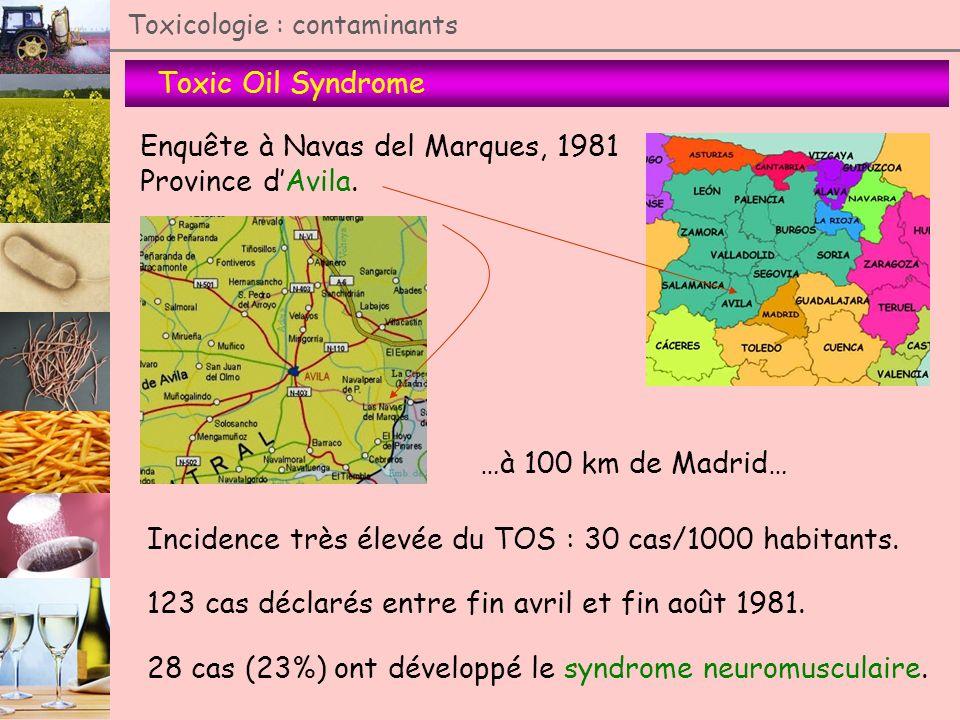 Enquête à Navas del Marques, 1981 Province d'Avila.