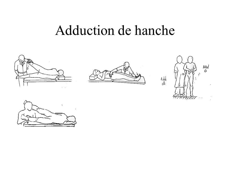 Adduction de hanche