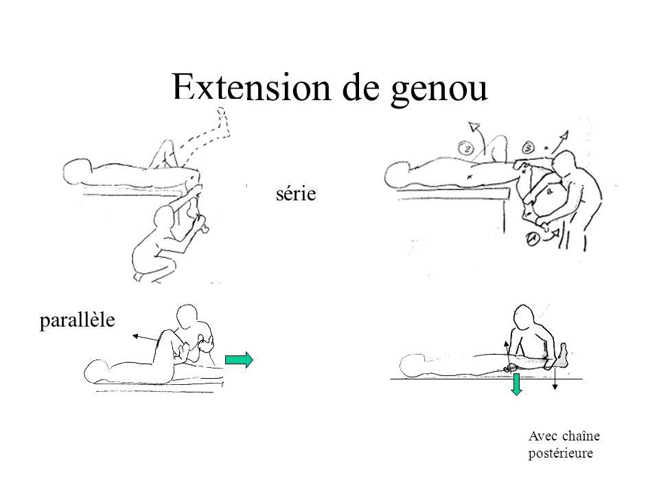 Extension de genou série parallèle Avec chaîne postérieure