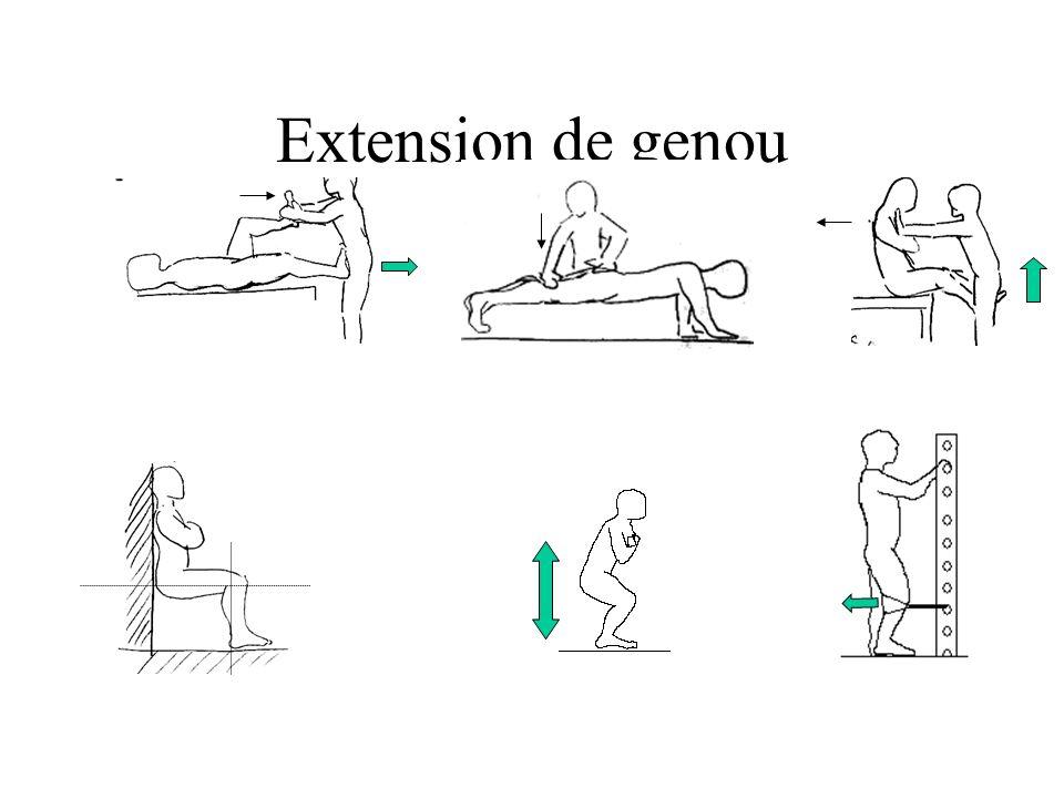 Extension de genou
