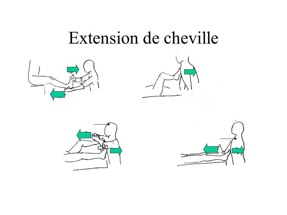 Extension de cheville