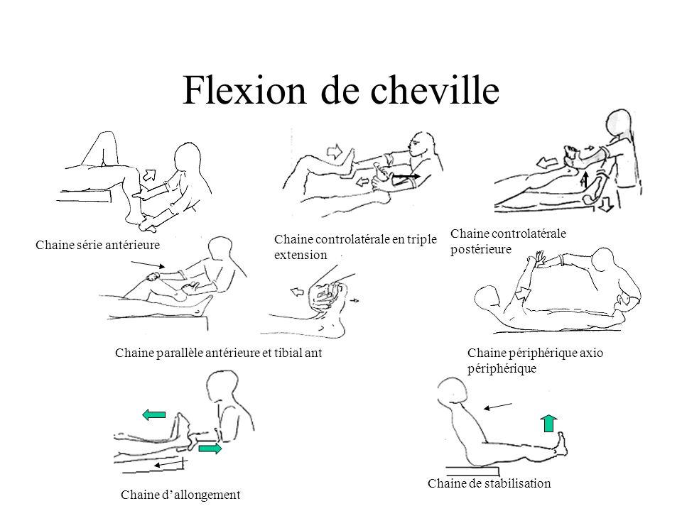 Flexion de cheville Chaine controlatérale postérieure