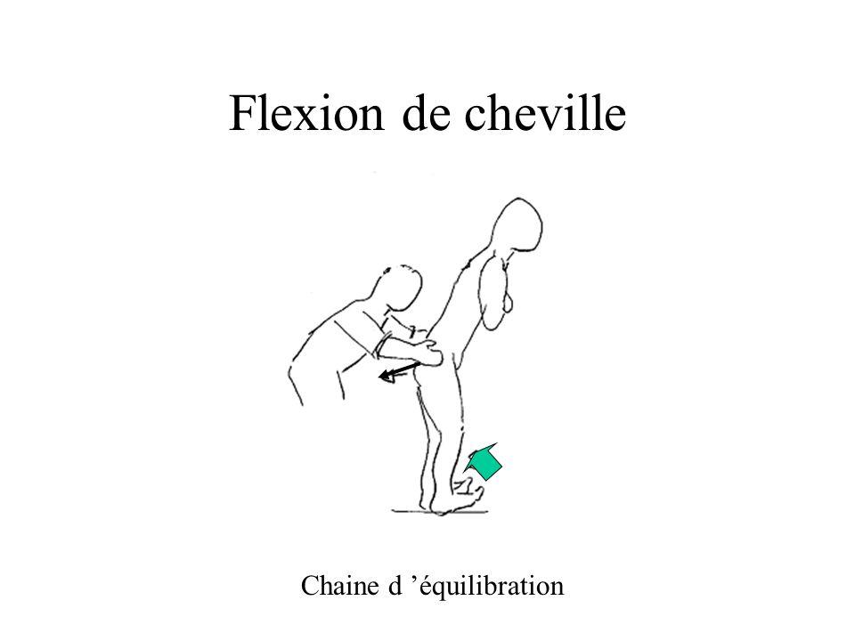 Flexion de cheville Chaine d 'équilibration