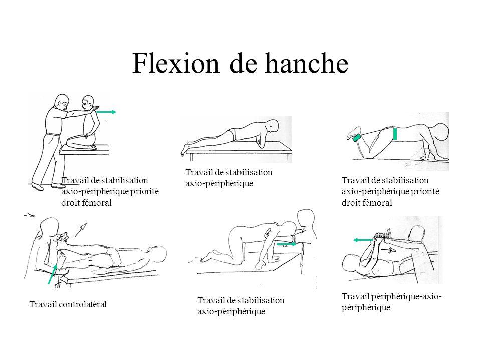 Flexion de hanche Travail de stabilisation axio-périphérique