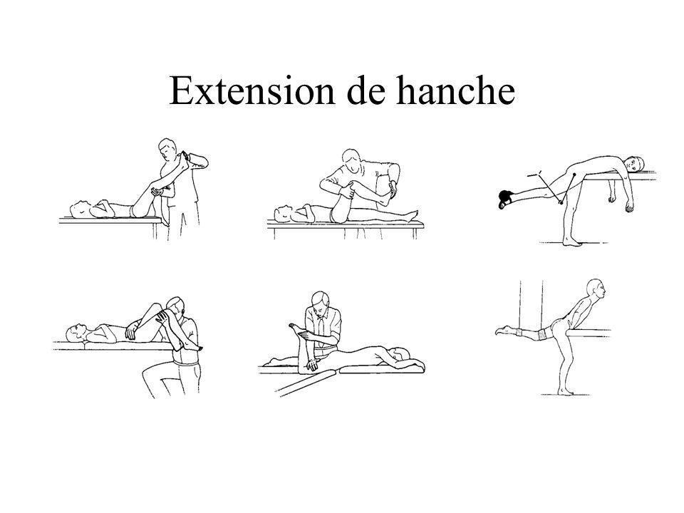 Extension de hanche