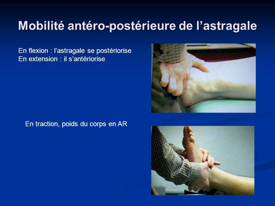 Mobilité antéro-postérieure de l'astragale