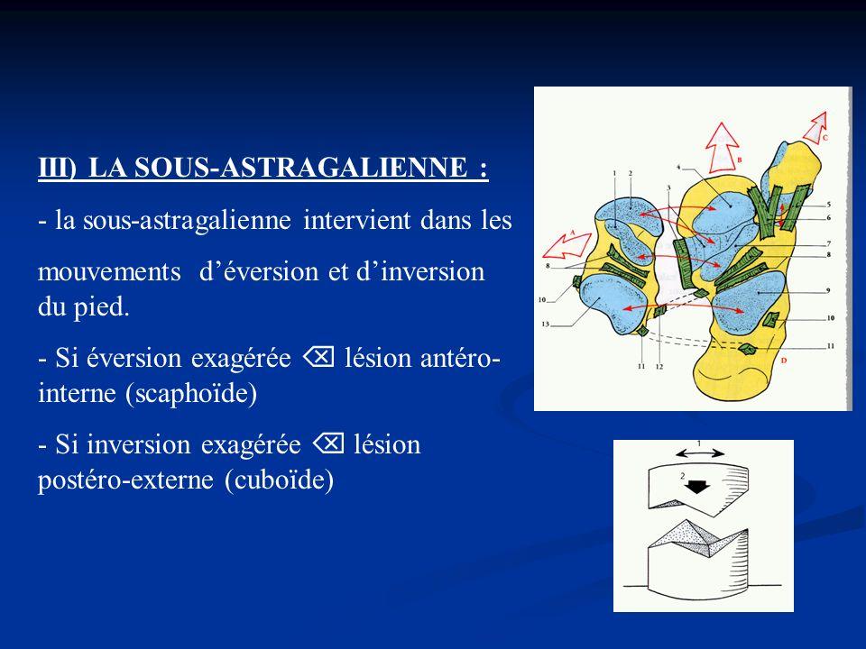 III) LA SOUS-ASTRAGALIENNE :
