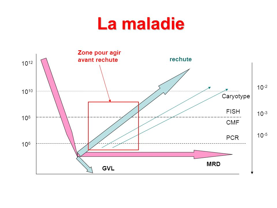 La maladie Zone pour agir avant rechute rechute 1012 10-2 1010