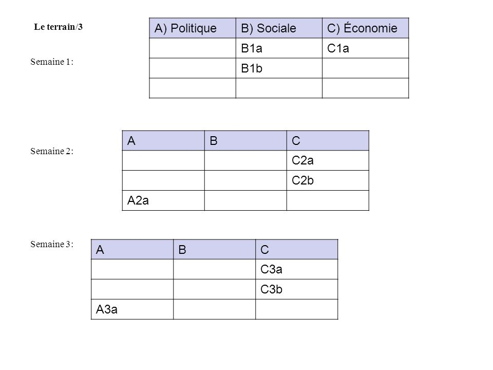 A) Politique B) Sociale C) Économie B1a C1a B1b A B C C2a C2b A2a A B