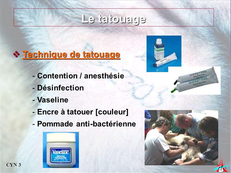 Le tatouage Technique de tatouage Contention / anesthésie Désinfection