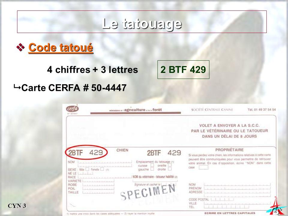Le tatouage Code tatoué 4 chiffres + 3 lettres 2 BTF 429
