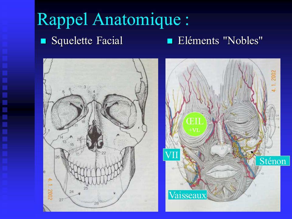 Rappel Anatomique : Squelette Facial Eléments Nobles ŒIL +VL VII