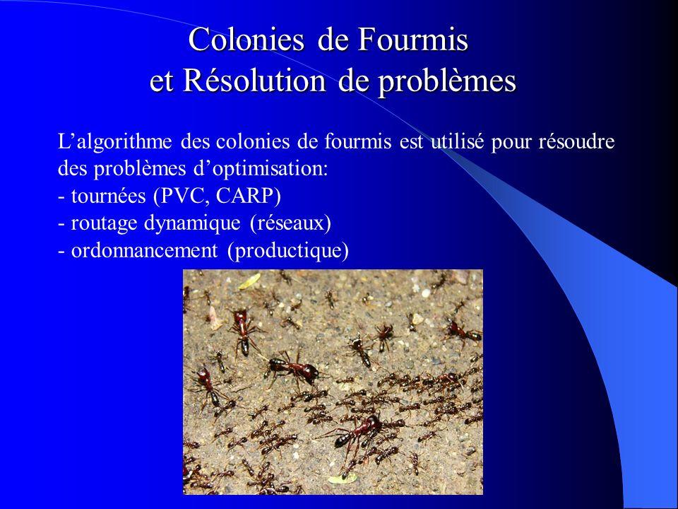 Colonies de Fourmis et Résolution de problèmes