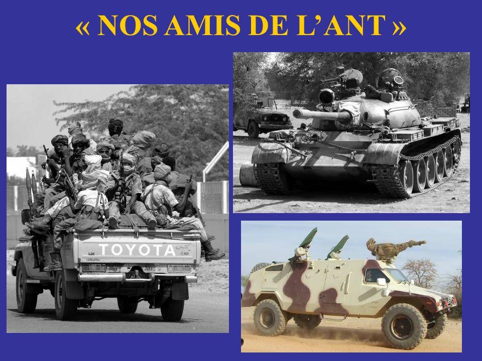 « NOS AMIS DE L'ANT »