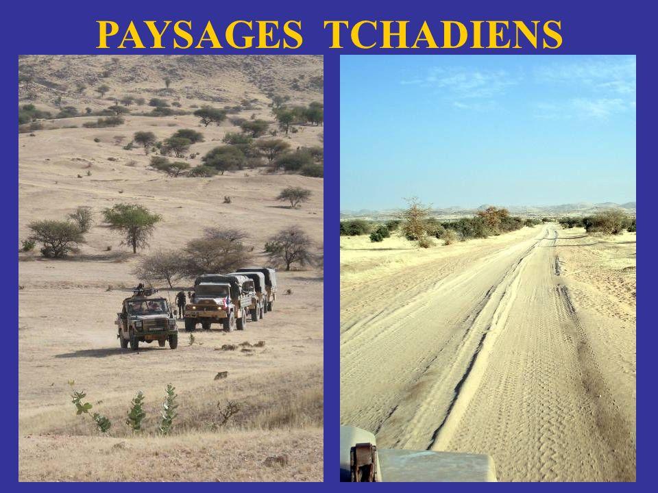 PAYSAGES TCHADIENS