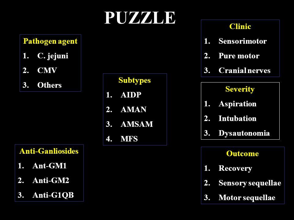 PUZZLE Clinic Sensorimotor Pure motor Cranial nerves Pathogen agent