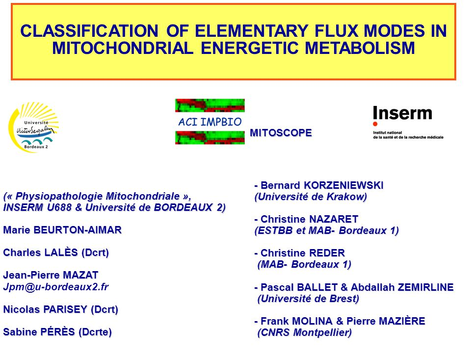 CLASSIFICATION OF ELEMENTARY FLUX MODES IN MITOCHONDRIAL ENERGETIC METABOLISM