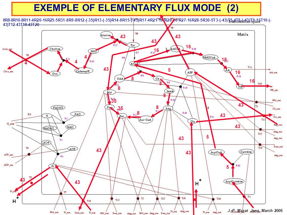EXEMPLE OF ELEMENTARY FLUX MODE (2)
