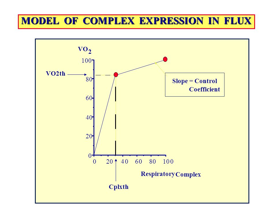 MODEL OF COMPLEX EXPRESSION IN FLUX