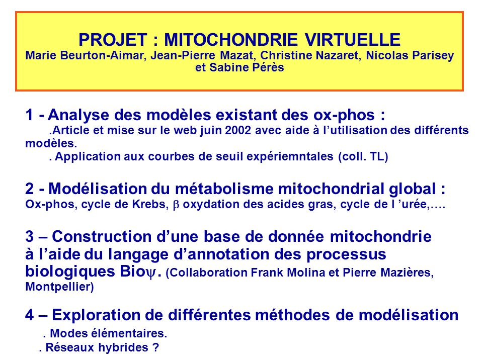 PROJET : MITOCHONDRIE VIRTUELLE