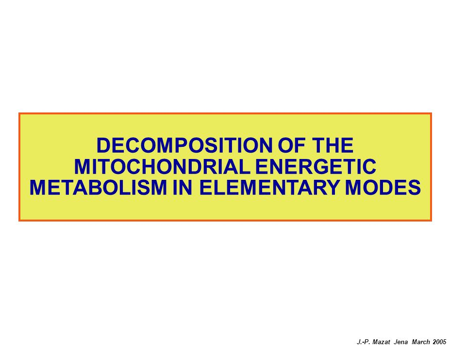 DECOMPOSITION OF THE MITOCHONDRIAL ENERGETIC METABOLISM IN ELEMENTARY MODES