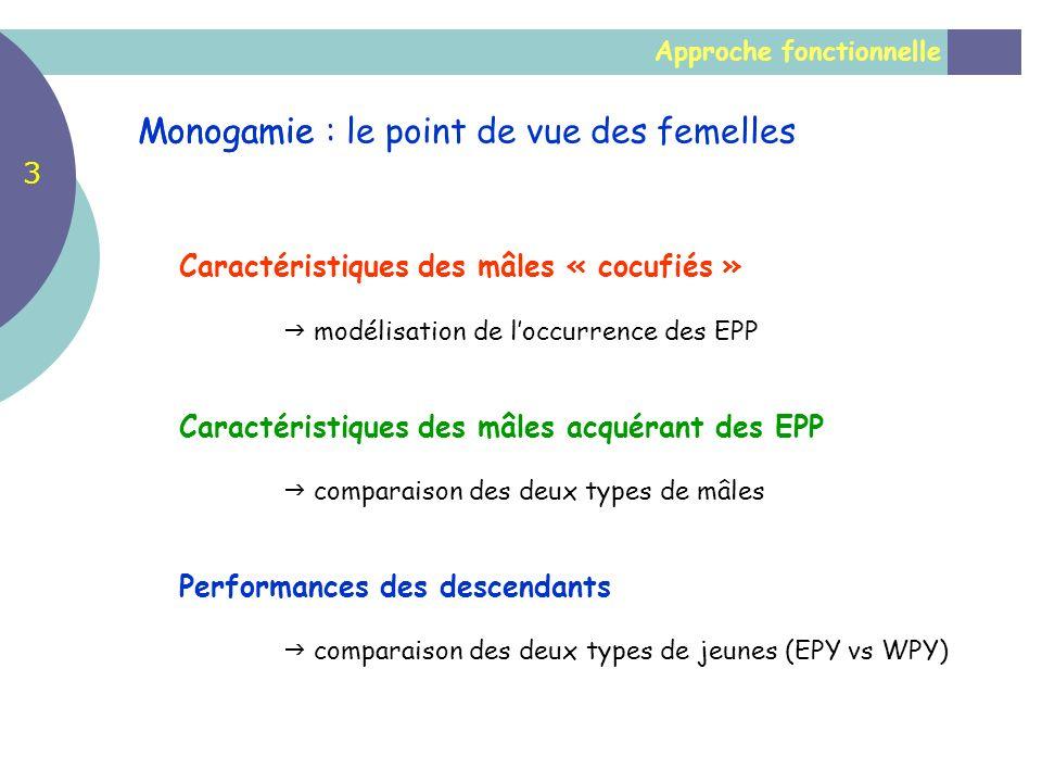 Monogamie : le point de vue des femelles Monogamie