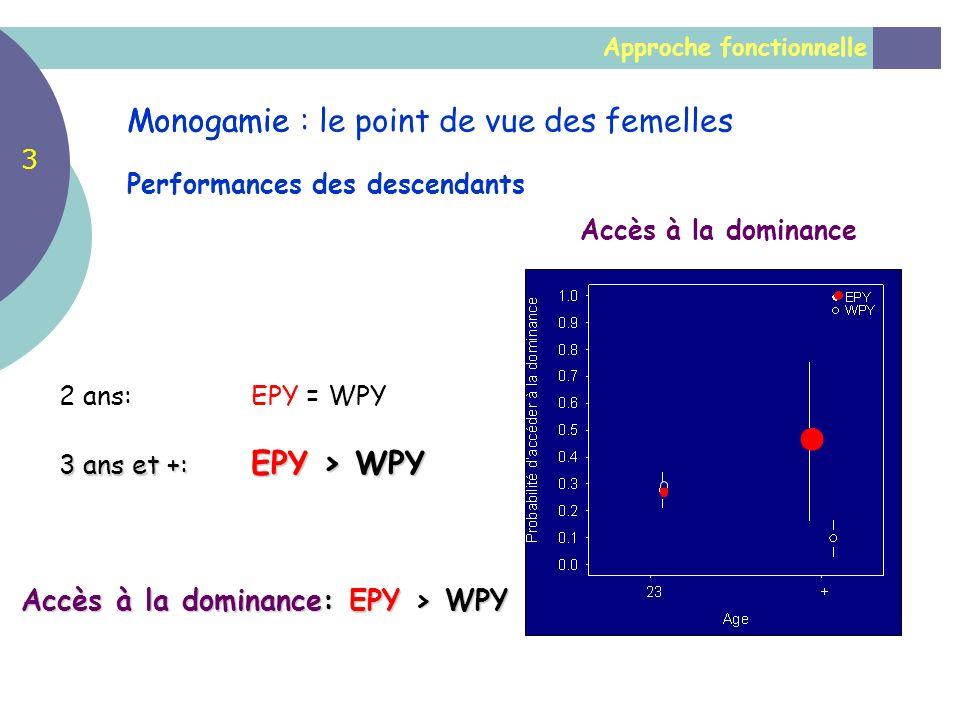 Accès à la dominance: EPY > WPY