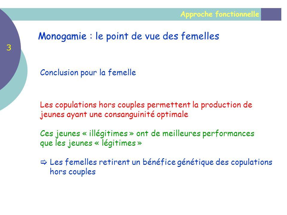 Monogamie : le point de vue des femelles