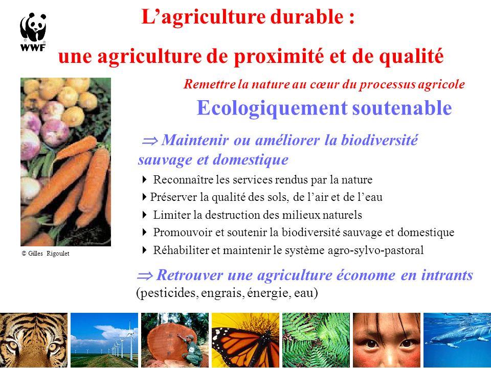 L'agriculture durable : une agriculture de proximité et de qualité
