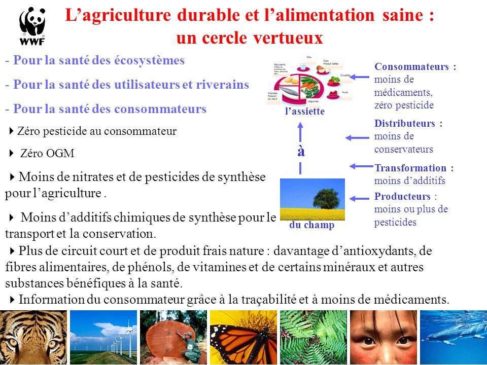 L'agriculture durable et l'alimentation saine : un cercle vertueux