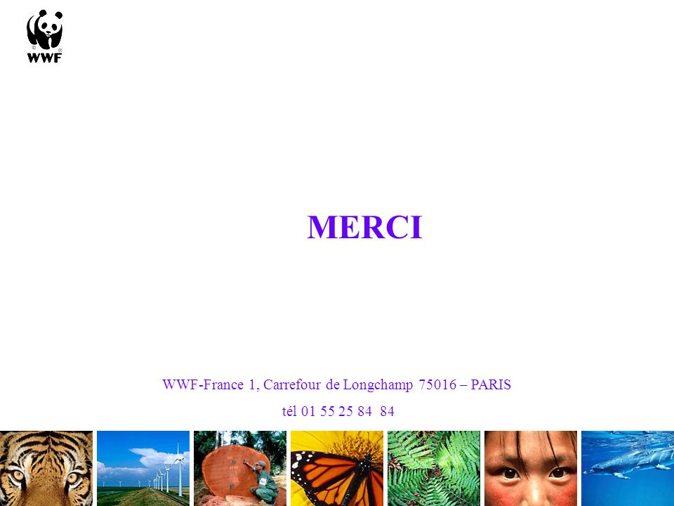 WWF-France 1, Carrefour de Longchamp 75016 – PARIS
