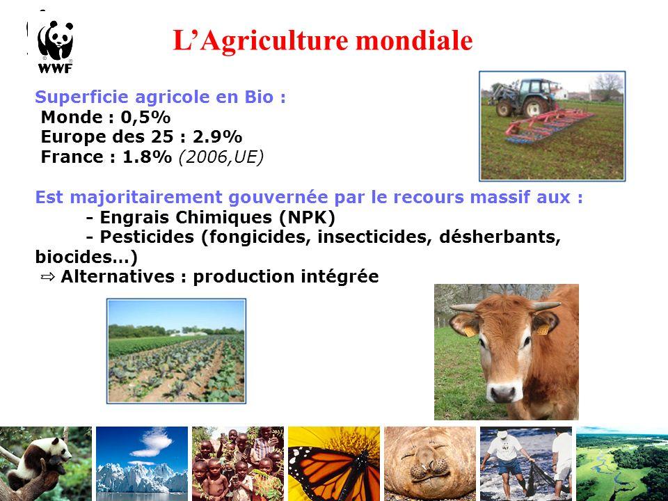 L'Agriculture mondiale