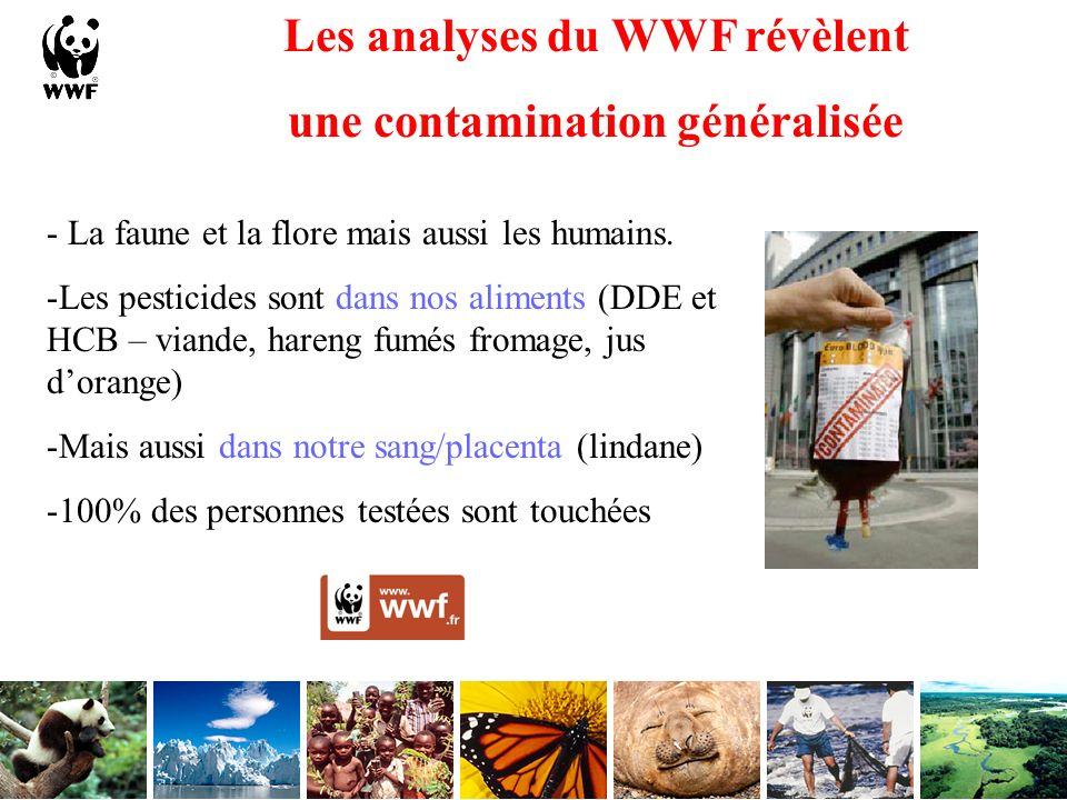Les analyses du WWF révèlent une contamination généralisée