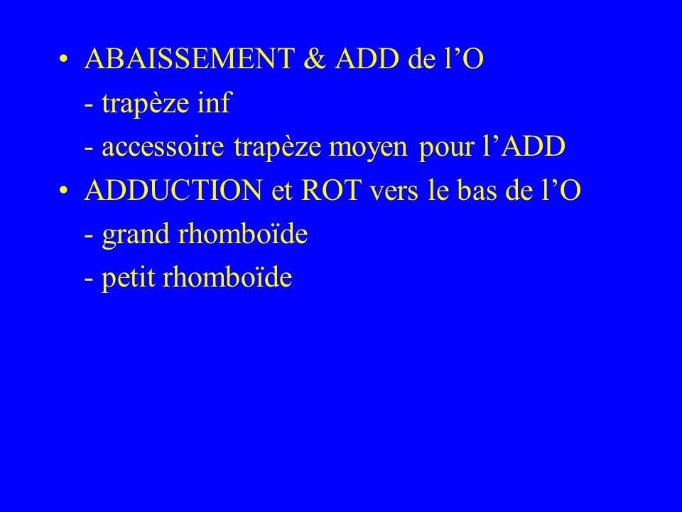 ABAISSEMENT & ADD de l'O