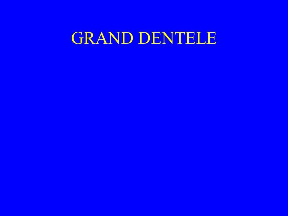 GRAND DENTELE