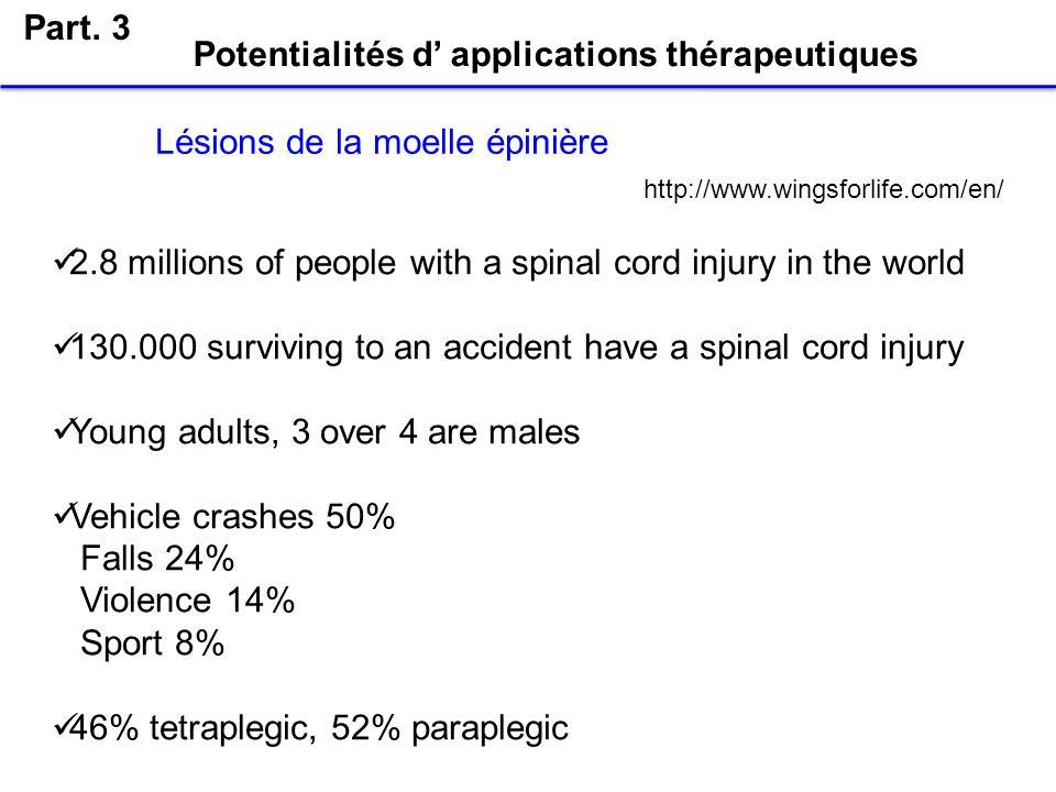 Potentialités d' applications thérapeutiques