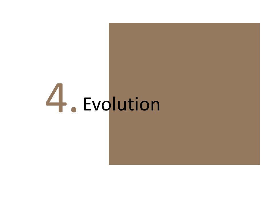 4. Evolution