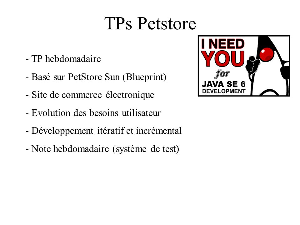 TPs Petstore TP hebdomadaire Basé sur PetStore Sun (Blueprint)