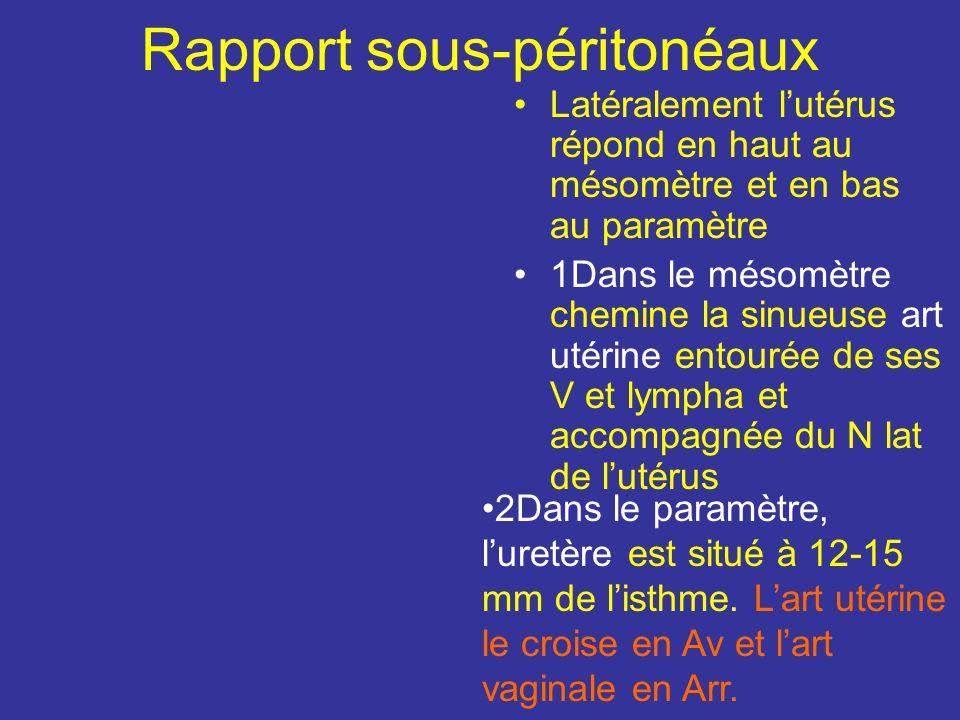 Rapport sous-péritonéaux