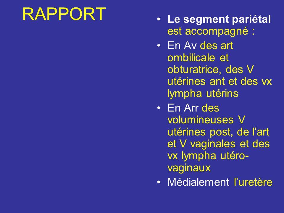 RAPPORT Le segment pariétal est accompagné :